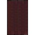 Solar panel BISOL SPECTRUM BMU-250 Red