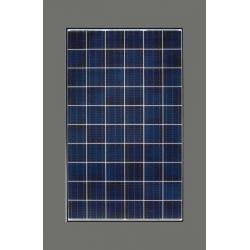 BENQ Solar panel 260W GreenTriplex