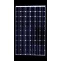 BISOL Solar panel BMO-270