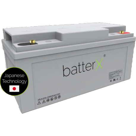 BatterX lead zinc-carbon battery LC700